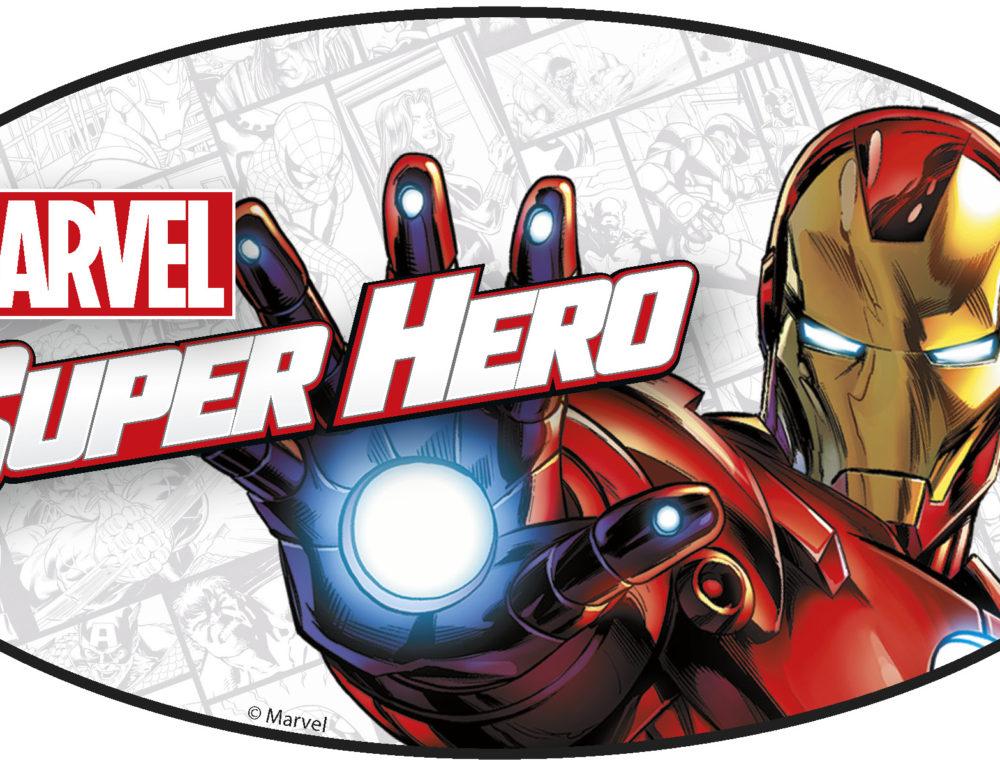 Marvel's Spideman & Iron Man Meet and Greet