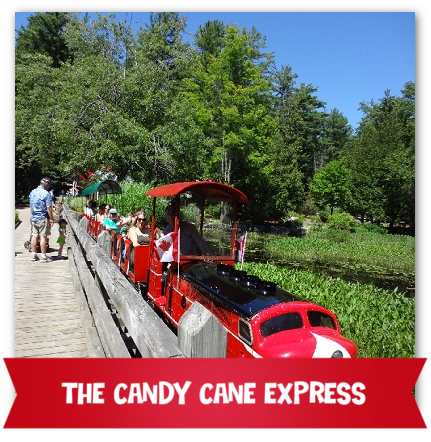 Candy Cane Express